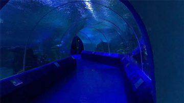 180 ili 90 stepeni akrilne ploče za tunel akvarijuma
