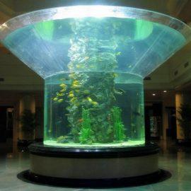 pmma staklo akvarij pola cilindra perspex riba cisterna