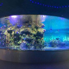 fabričke zalihe za ribu, okrugli akvarijumski akvarijumi