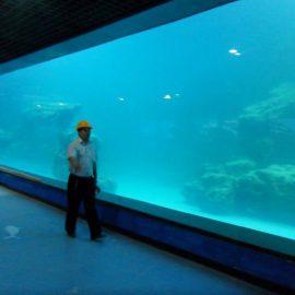 Ukrasni UV akrilni panel za akvarijum / okeanarium
