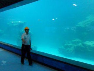 Ukrasni UV akrilni panel za akvarijum, okeanarium