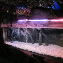 Akrilna tabla / prozor za podvodno more