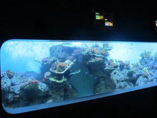 Vještački lijev akrilni cilindrični prozirni riblji akvarijum / pogled prozor