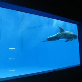 visokokvalitetni akrilni akvarijum akvarijum / bazeni podvodni debeli prozori