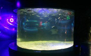 Akrilni riblji rezervoar