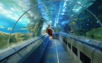 Akrilni tunel