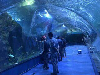 Acrylic tunnel oceanarium projekat u javnim akvarijumima