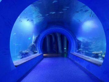 Visoki prozirni akrilni akvarijum akvarijum različitih oblika