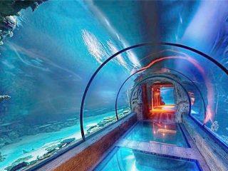 Moderan dizajn akrilni akvarij dugački tunel
