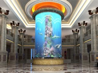 veliki cilindar akrilni akvarijum